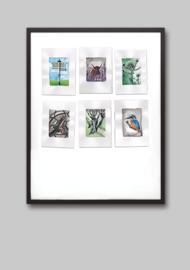 Collageprint: IJsselmonde 2021