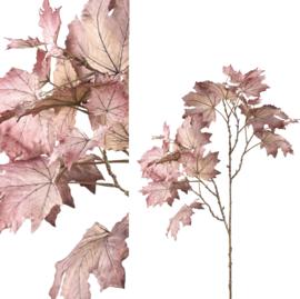 Leaves Plant light purple maple leaves spray