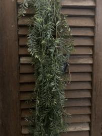 Hangplant Groen 150 cm