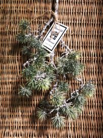 Pine Spray Green Powedered L 80 cm