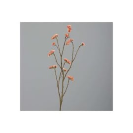 STATICE, 105 CM, DUSTY-PINK
