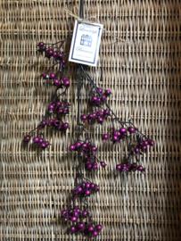 "Bloem ""Aralia Purple Ice H 85 cm"