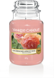 YC Sun-Drenched Apricot rose Large Jar