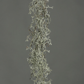 TILLANDSIA GARLAND, 90 CM, (1)AUTUMN