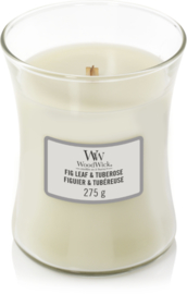 WW Fig Leaf & Tuberose Medium Candle