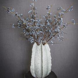 PTMD Berry Plant Blauwe bessentak