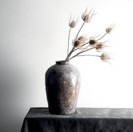 Thistle plant light brown thistle bundle