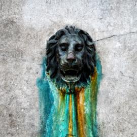 Vierkante print: De Leeuw van de Mariaplaats