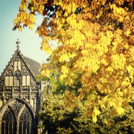 Vierkante print: Domkerk in de herfst