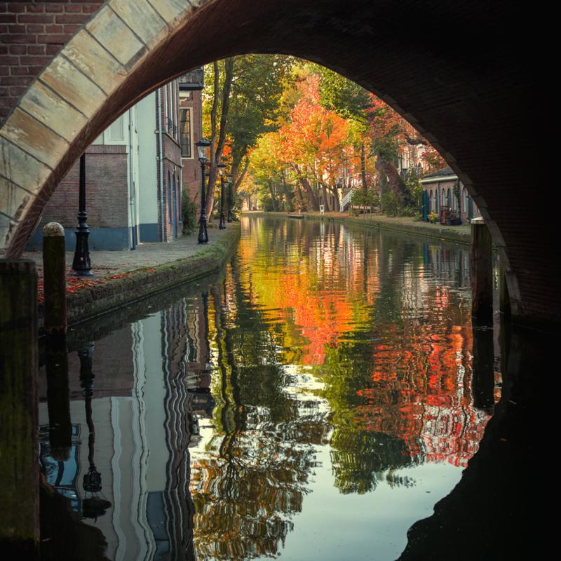 Vierkante print: Twijnstraat aan de Werf in de herfst