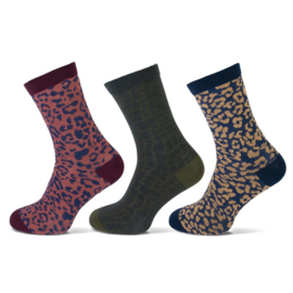 Teckel damessokken - luipaard gekleurd - 3-pack