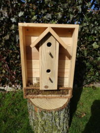 Kist met vogelhuisje