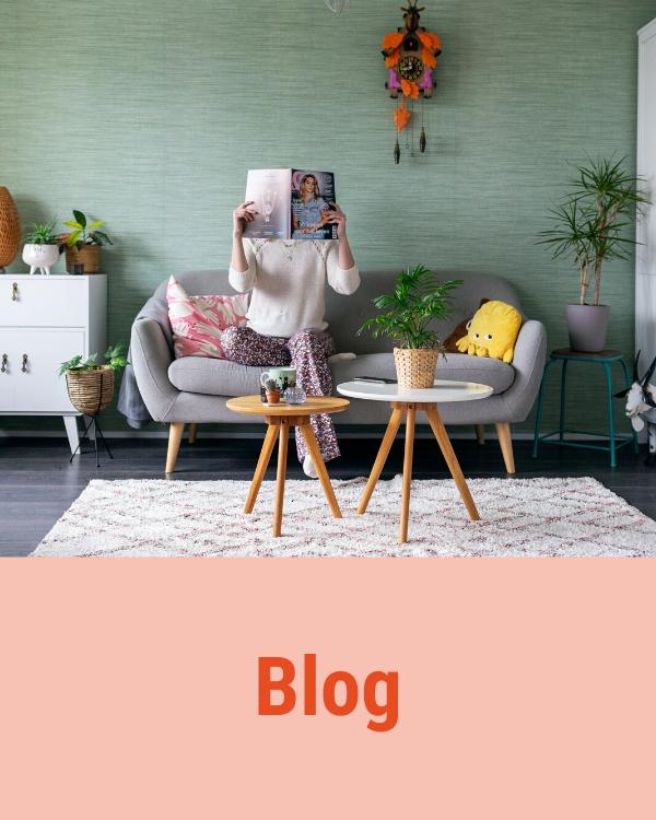 ga-naar-de-blog-van-gekkiggeit-om-leuke-artikelen-te-lezen-over-allerlei-onderwerpen