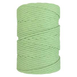 Hearts single twist 8 mm agave green(200m)