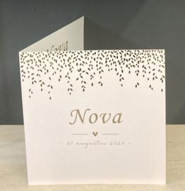 Nova geboortekaart