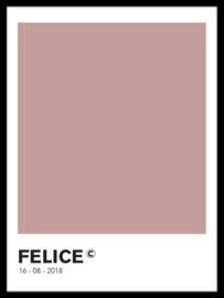 Pantone poster -  (20 kleuren)