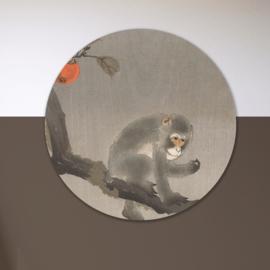 Art: Aap - wandcirkel