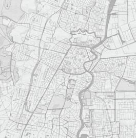 Haarlem stadskaart - potloodschets - 20 kleuren