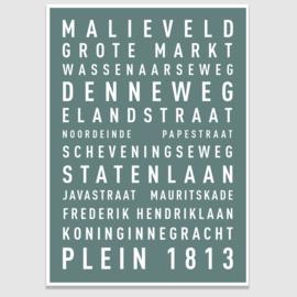 Tekstposter highlights Den Haag - 20 kleuren