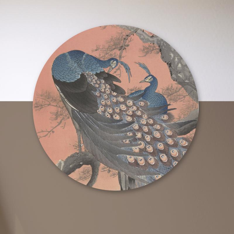 Art: Pauwen - wandcirkel
