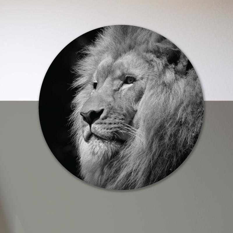 Leeuw - wandcirkel