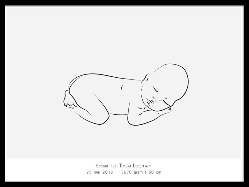 Poster met 1:1 babyschets  - horizontaal