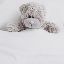 STOFZUIGERKORRELS - Fluffy & Cuddle