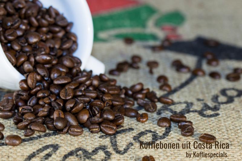 Koffiebonen uit Costa Rica | 31 augustus 2020