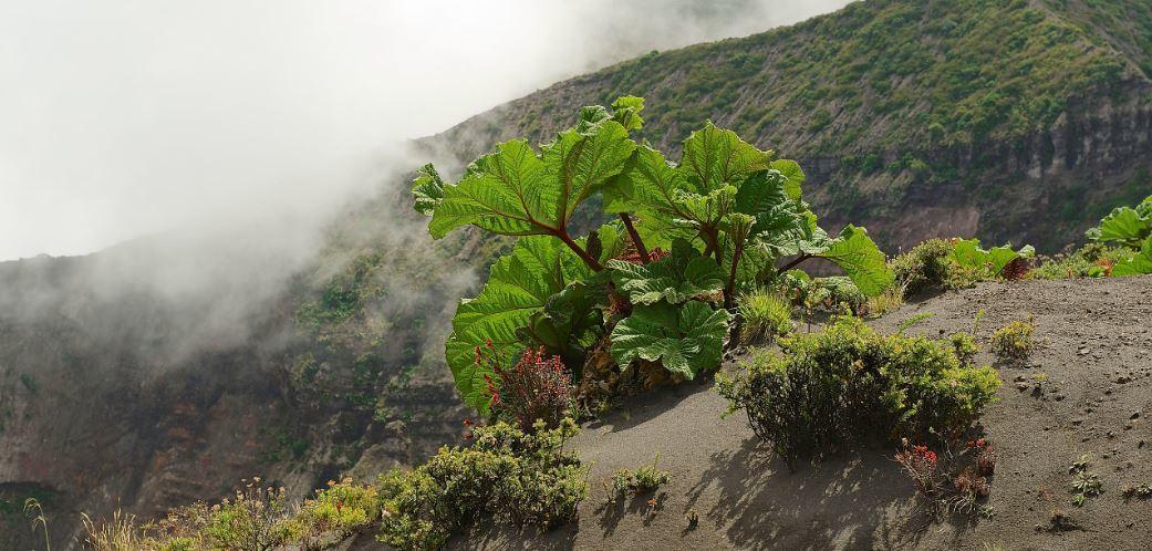 Irazu vulkaankrater Costa Rica