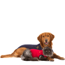MPS - Medical Pet Shirt