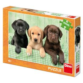 Legpuzzel Labrador Puppies  - 300 XL stukjes