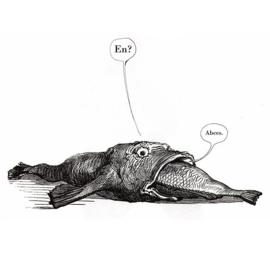 'Het geheim van het konijn' - Zaza