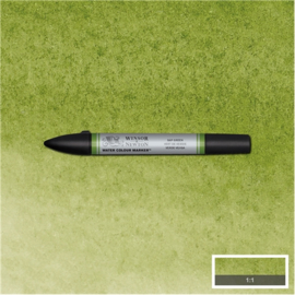 Winsor & Newton Aqua brushpen - SAP GREEN