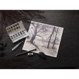 Derwent Graphitint aquarelverf - set van 12 + waterbrush