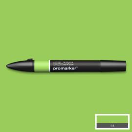 Winsor & Newton promarkers - Leaf Green
