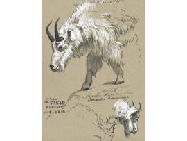 Faber Castell PITT artist Brushpen B - Wit 101