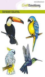 CraftEmotions clearstamps A6 - tropische vogels - set van 4