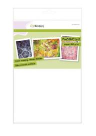 CraftEmotions ProSilkCard - Luxe glad karton - 10 vellen A4 - 300 grams - Wit