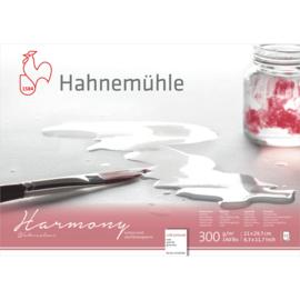 Hahnemühle Watercolour Aquarelpapier A4  cold pressed - 12 vellen- 4-zijdig gelijmd - Wit papier