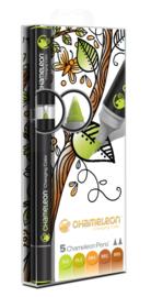 Chameleon Alcohol based Pens - Earth Color Tones - set van 5