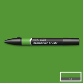 Winsor & Newton promarkers Brush - Forest Green