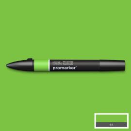 Winsor & Newton promarkers - Bright Green