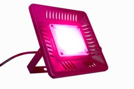 Groeilamp Zonlicht Wit - Growlight Sun Light LED 100 Watt