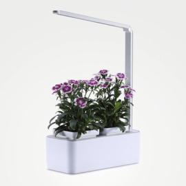 iBought Binnenshuis Tuinieren - Indoor Gardening