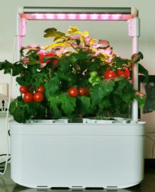Plug & Grow - Smart Garden Medium 2 pots + Groeilicht - Hydroponic Systeem ACTIE!