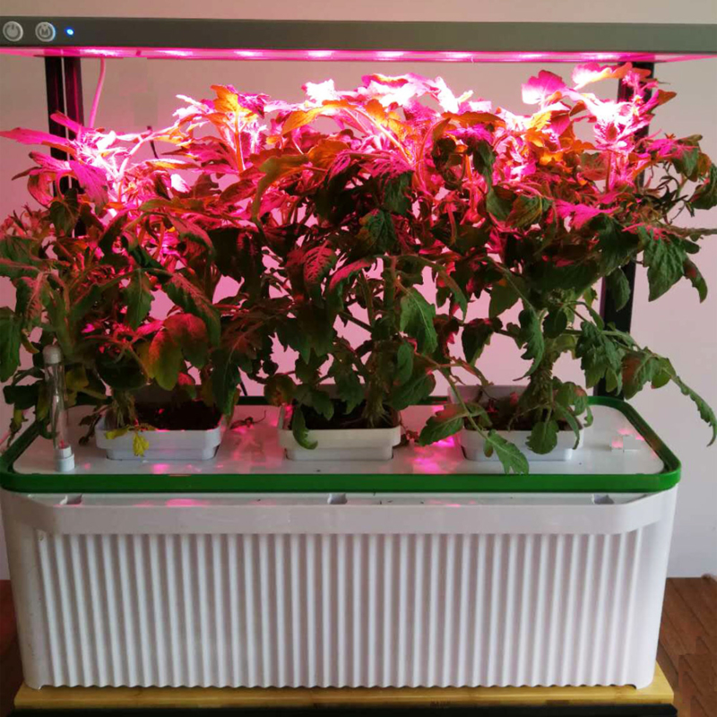 Smart Garden Large + Groeilicht en Hydroponic Systeem Click & Grow