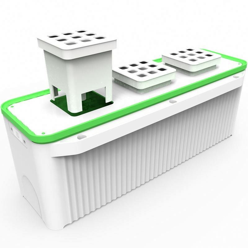 Smart Garden Large + Hydroponic Systeem Click & Grow