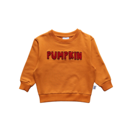SWEATER // RED PUMPKIN
