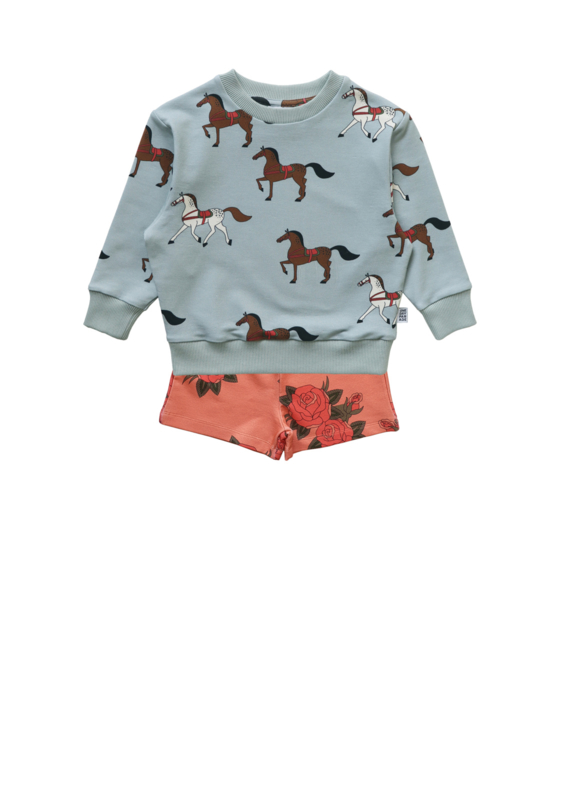 HORSES SWEATER + PINK ROSES SHORTS