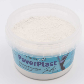 Paverplast, 100 gram
